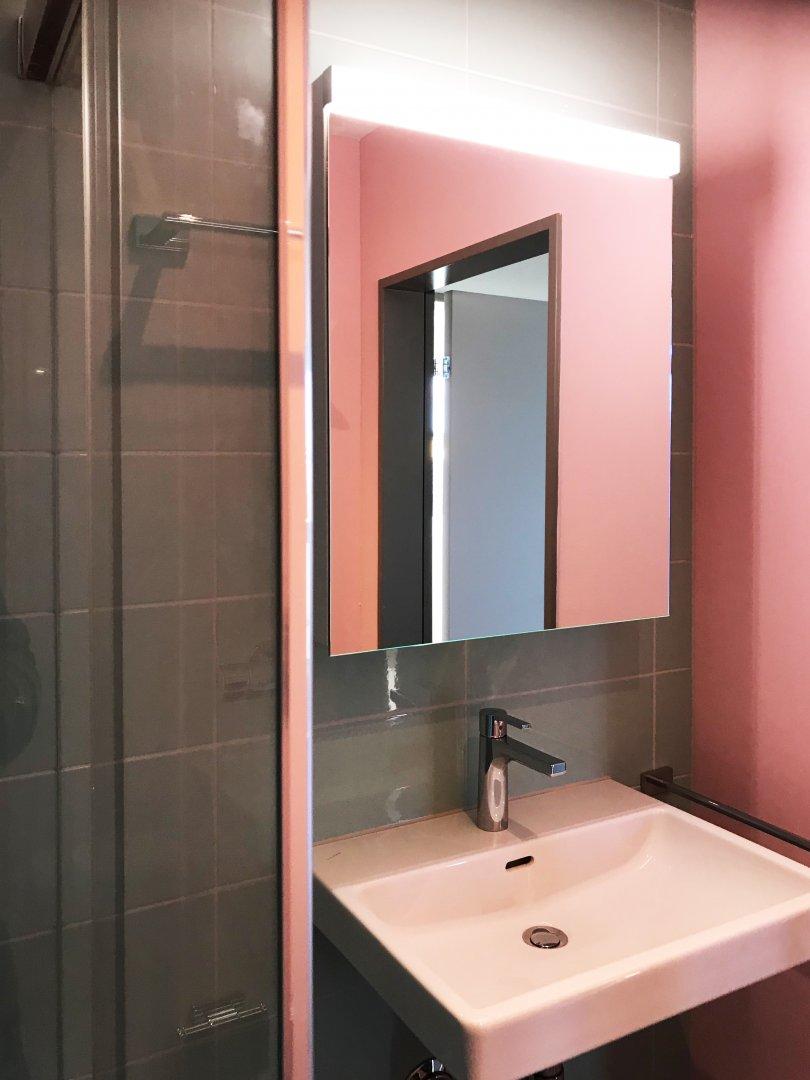 2 Zi Wohnung: Bad/WC