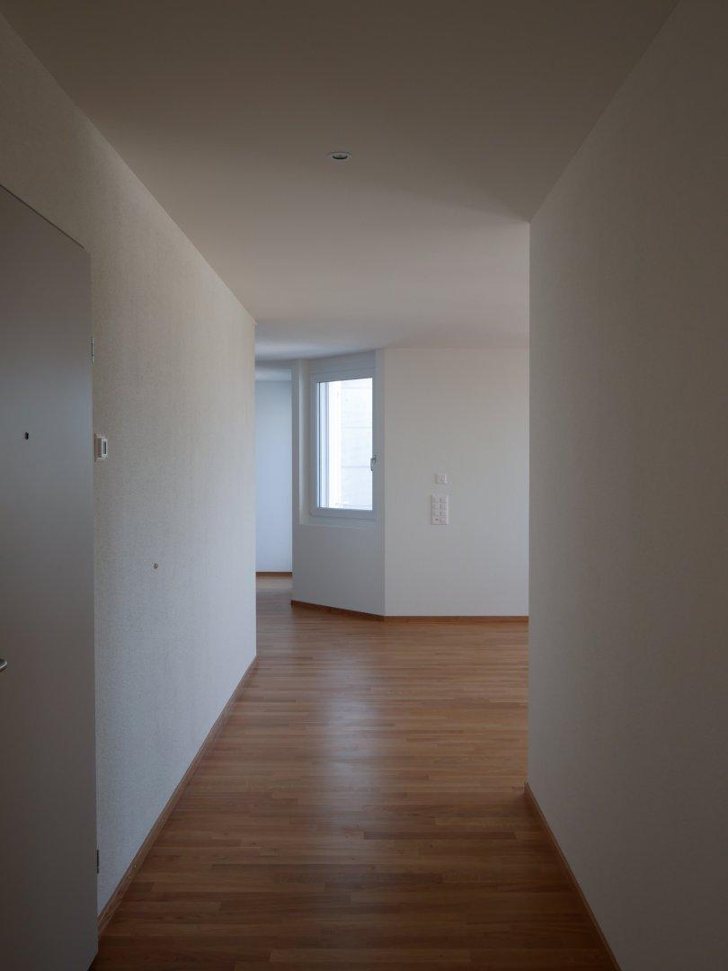 Attika Wohnung: Eingangsbereich/Wohnzimmer